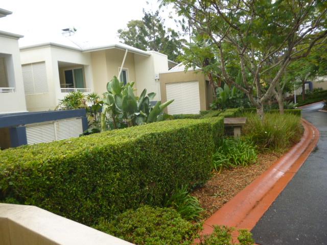 Real Estate | Gold Coast | Chevron Realty | P1080321